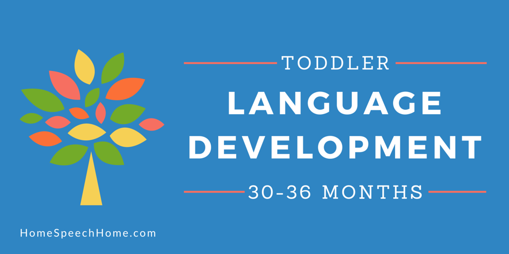 Language Development in Toddlers 30-36 Months My Favorite Developmental Stage