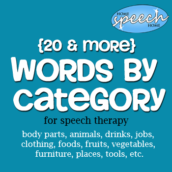 20+ Categories for Speech Therapy Practice